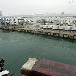 北海道からフェリーで佐渡の旅