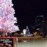 札幌イルミネーション2013が始まりました