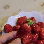 ストローでイチゴのヘタを簡単に取る方法