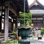 雨でラッキーしっとり竹寺の風景