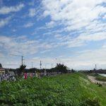 2015北海道マラソン新川沿いあたり