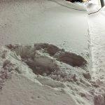 子どもの雪倒れは私がやったら行き倒れ