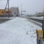 何でもへばりつきたい春の雪