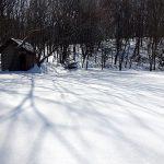 春の雪は足もはまっちゃうザラメ雪