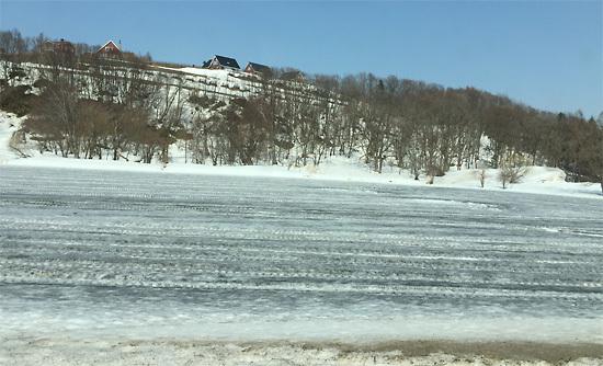 融雪剤を巻いた畑