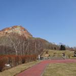 昭和新山のエゾシカは、ほっかむりに腹巻き
