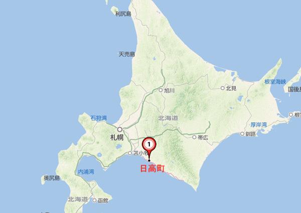 日高街地図