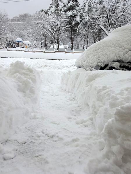 雪につけた道