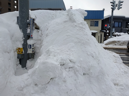 雪に埋もれた横断歩道