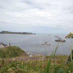礼文島スコトン岬のトド岩と見てトド肉を食べる