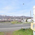 軽川桜隄は桜と鯉のぼりと手稲山のまるごとスポット