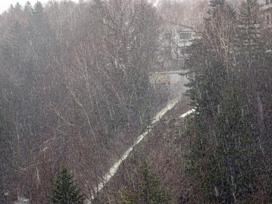 白ヒゲの滝