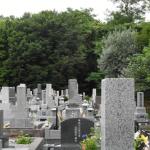 お墓は先祖代々から合同墓の時代へ戻る