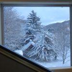 北湯沢ホロホロ山荘のヒザに優しいベッド和室