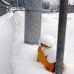 雪国の消火栓には目印がある