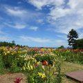 オーンズ春香山ゆり園