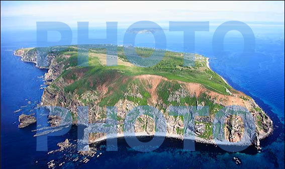 天売島 航空写真