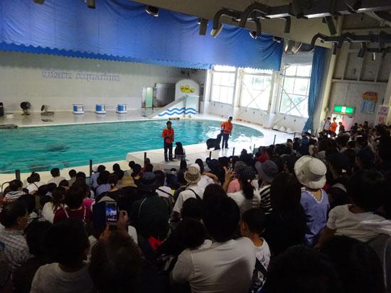 小樽水族館 オタリアショー