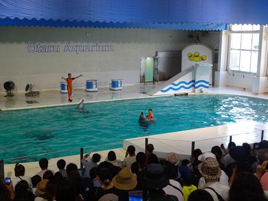 小樽水族館 イルカショー