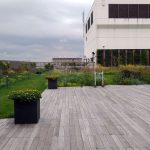 そらのガーデンはエスタ屋上、札幌駅直結の癒しの庭