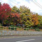 北海道の紅葉は平地でも見ごろ(2018)