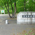 スズラン群生地は札幌の富丘西公園でも