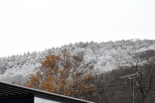 山に降った初雪